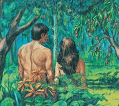 Seed vs. Cuttings: Creation Myths in the Garden of Teadom